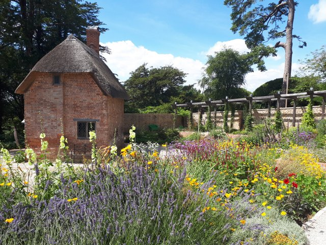 Cottage garden at The Newt Somerset