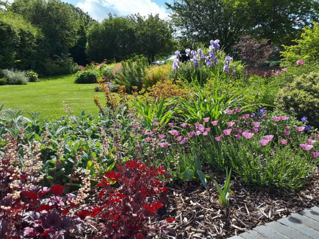 Country garden planting design - Ashby de la Zouch