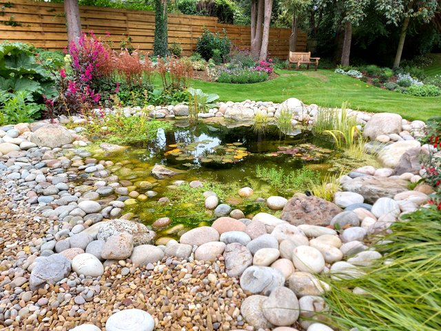 Wildlife pond project - Loughborough